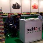 Fructele moldoveneşti se impun pe pieţele din străinătate