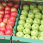 40 de tone de mere autohtone au fost reţinute de vameşii din Federaţia Rusă