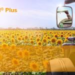 Clearfield® Plus – cea mai inovatoare tehnologie de creştere a florii-soarelui