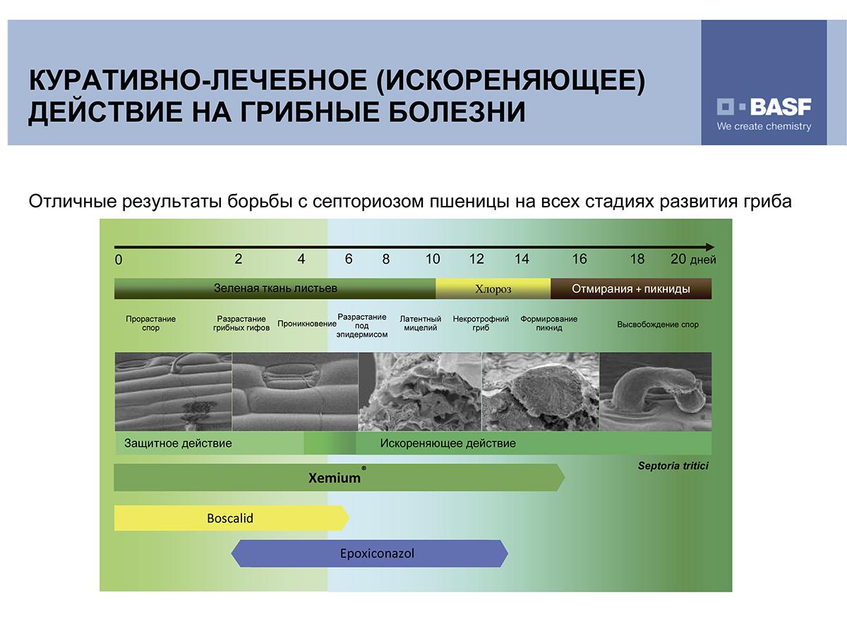 Microsoft PowerPoint - Системы 13 file