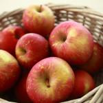 Pomicultorii polonezi sunt îngrijoraţi de scăderea exporturilor de mere