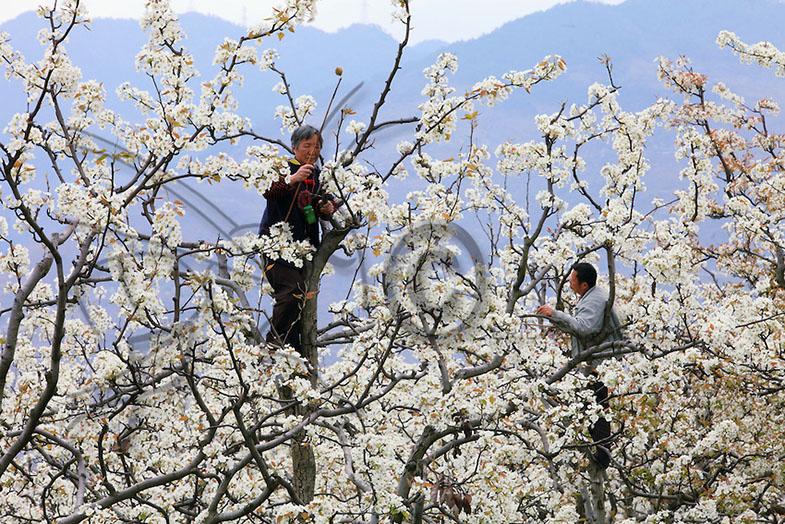 Foto: http://cdn.c.photoshelter.com/