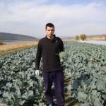 Un tânăr creşte broccoli şi conopidă la Ialoveni