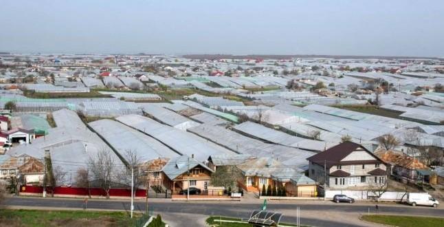 Satul cu cel mai scump pământ din România. Un hectar de teren agricol este de trei ori mai scump decât în Olanda