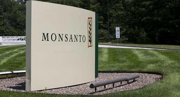 Nemţii îi atacă pe americani la ei acasă: Grupul Bayer vrea să cumpere gigantul Monsanto