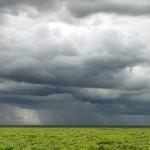 Cantitatea de precipitaţii căzută aseară a depăşit media lunară în mai multe localităţi