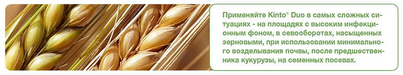 foto-kinto-rus