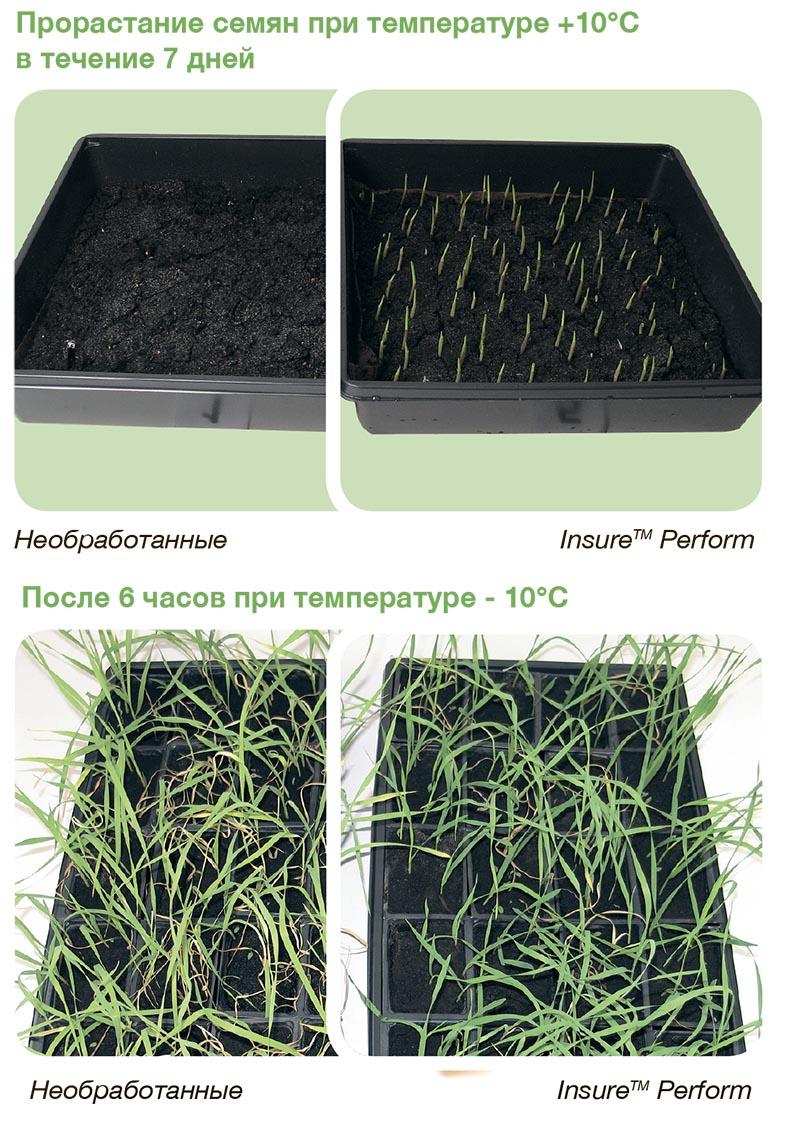 insur-perform-caracteristici1-rus
