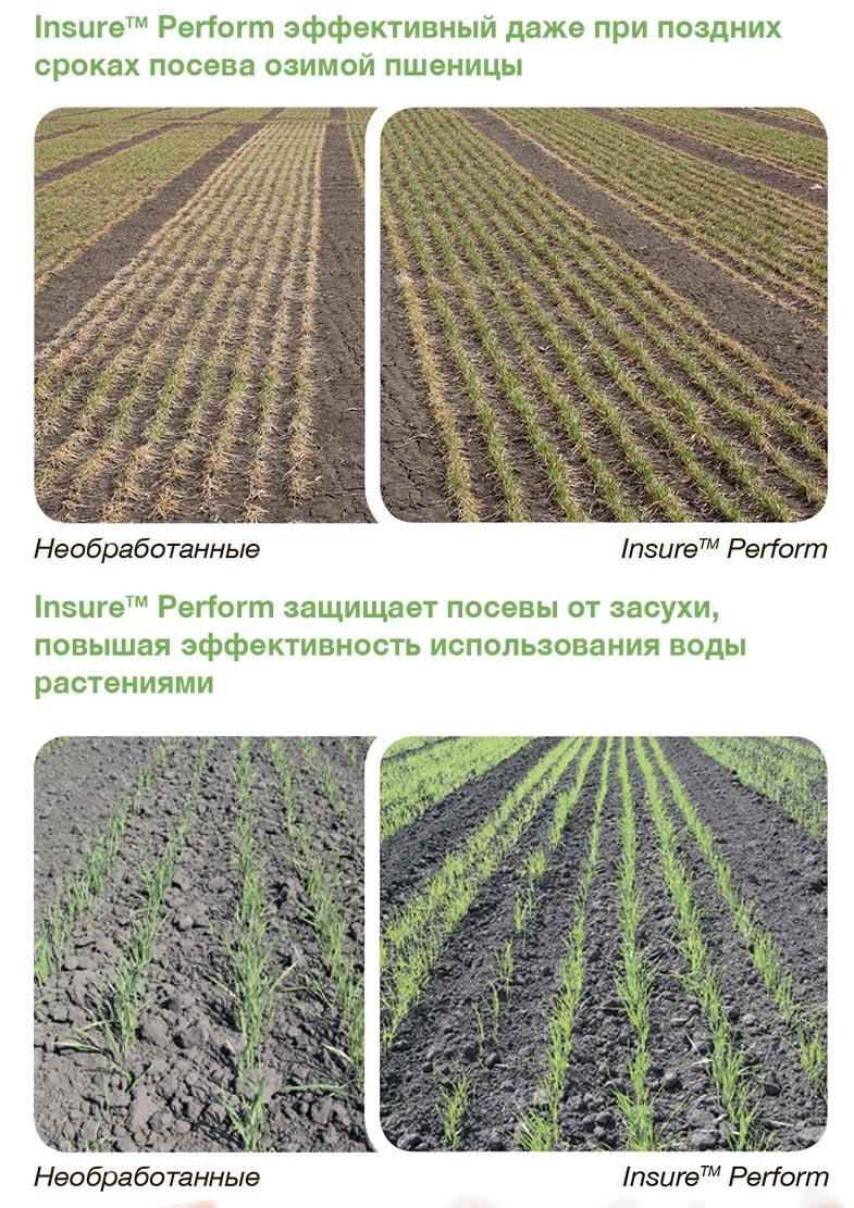 insur-perform-caracteristici2-rus