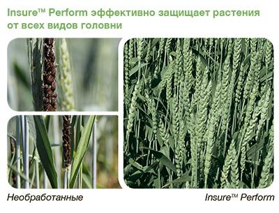insur-perform-golovnea-rus