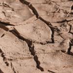 Deşertificarea ar putea şterge circa 7 milioane de ha de teren