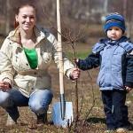 Plantarea pomilor toamna le asigură o creştere cu 30% mai bună