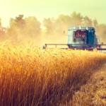 Agricultura din România, sufocată de birocraţie şi de numărul uriaş de reglementări