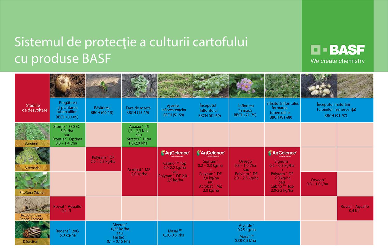 Sistem-protectie-cartof