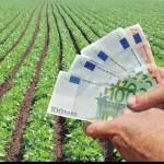 A fost aprobat Regulamentul de subvenţionare în agricultură pentru următorii 5 ani