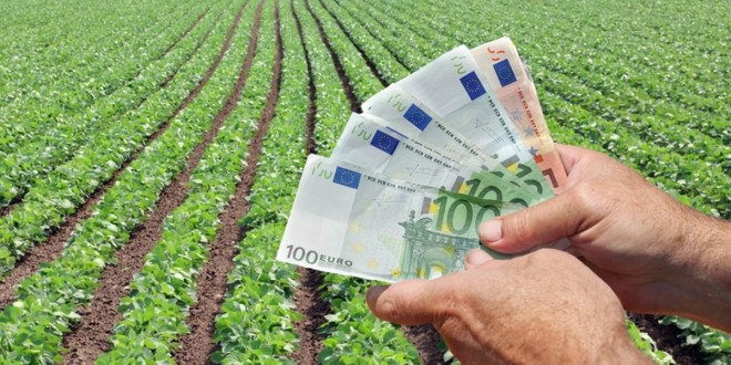 Agricultorii au solicitat subvenții de peste un miliard de lei