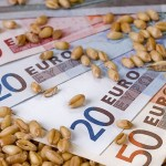 Scade preţul grâului în Europa