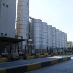 Turcia a cumpărat 180.000 tone de porumb din UE și Ucraina