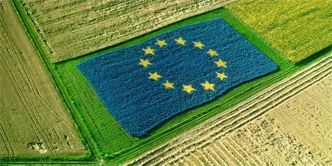 UE: suprafața agricolă scade, iar cererea de cereale crește