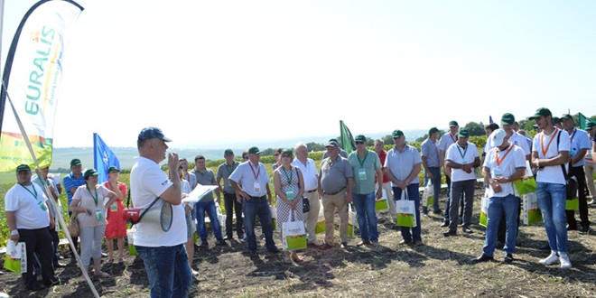 """BASF și Euralis au organizat """"Ziua Câmpului"""". Reportaj foto"""