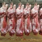 UE și SUA au redus exportul cărnii de porc în China
