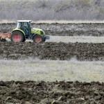 Producția globală de cereale se îndreaptă spre un nou record, ridicând consumul și rezervele