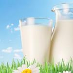 Prețul laptelui în UE – prea mic pentru a acoperi costurile