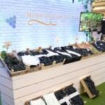 Se majorează exportul de struguri în Polonia