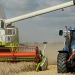 Producția de cereale în UE a depășit 300 milioane tone în 2016. Topul țărilor producătoare