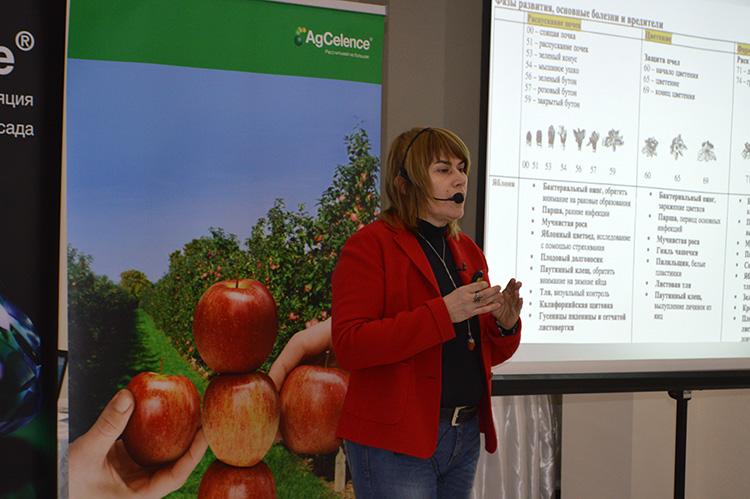 seminar-edinet1