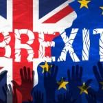Posibilă criză în sectorul agricol din Marea Britanie