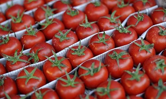 Rusia a anulat sancţiunile impuse exportatorilor de tomate din Turcia