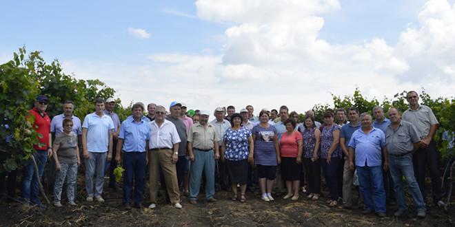 Seminar BASF dedicat viței de vie la Cahul