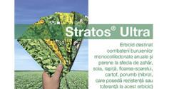 Stratos Ultra – cea mai eficientă soluție în combaterea buruienilor și samuraslei în cultura de rapiță