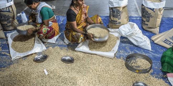 Indicele FAO pentru prețurile la alimente a scăzut în septembrie pe fundalul rezervelor robuste