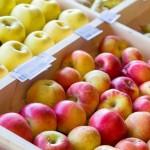 De ce în anul curent au scăzut preţurile la mere?