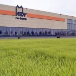 BASF cumpără Nunhems de la Bayer