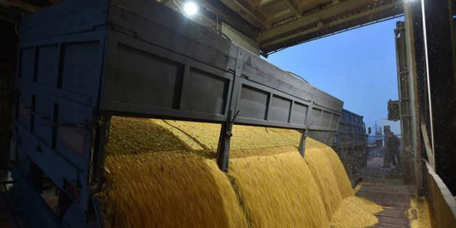 Prețurile la produsele alimentare au scăzut în octombrie