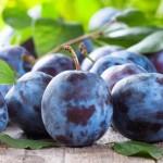 Rosselhoznadzor solicită suspendarea certificării exportatorilor din raioanele Ialoveni și Cantemir