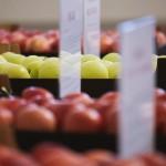 13 producători de fructe și struguri au obținut certificate GlobalGAP