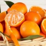 portocale-egipt