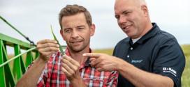 BASF получил разрешение на выпуск инновационных фунгицидов