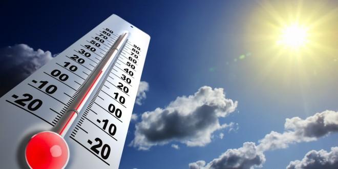 Temperaturile optime pentru aplicarea diferitor substanțe active