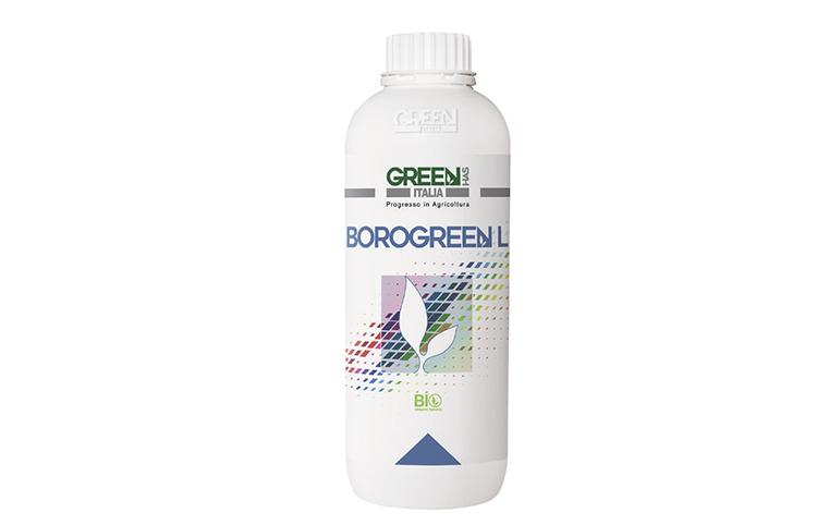 BorogreenL-ambalaj2