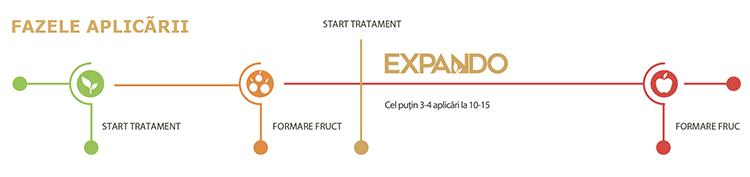 Expando-faze2