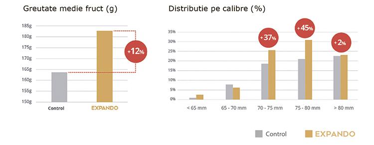 Eficiența EXPANDO la măr. Lagnasco (CN) – Italia. Doza – 450 g/hl în 2 aplicări.
