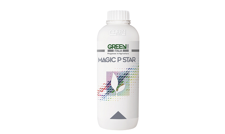 MagicPStar-ambalaj2