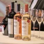 Volumul vînzărilor Purcari Wineries au crescut în 9 luni din 2019 cu 22%