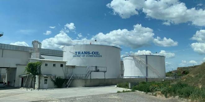 Trans-Oil începe construcția unei noi fabrici de prelucrare a seminţelor de floarea soarelui