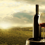 Exportul vinurilor moldovenești înregistrează cel mai înalt nivel din ultimii 5 ani